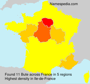Surname Bute in France