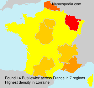 Surname Butkiewicz in France