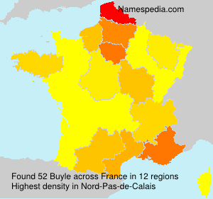 Surname Buyle in France