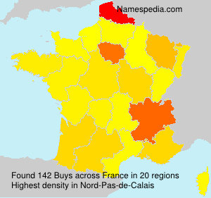 Surname Buys in France
