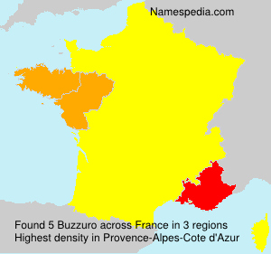 Surname Buzzuro in France