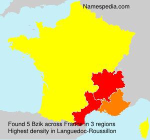 Surname Bzik in France