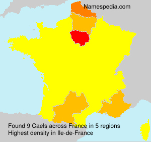 Surname Caels in France