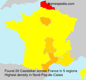 Surname Caesteker in France