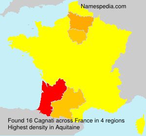 Surname Cagnati in France