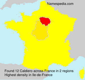 Surname Caldiero in France