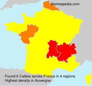 Calleia