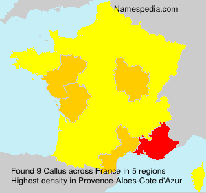 Surname Callus in France