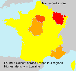 Surname Calzetti in France