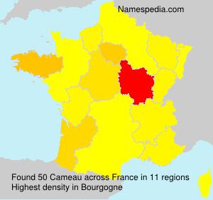 Cameau