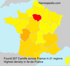 Surname Camille in France