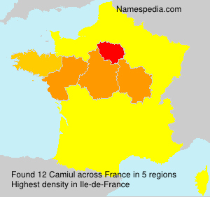 Surname Camiul in France
