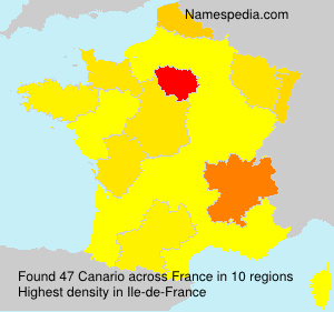 Surname Canario in France