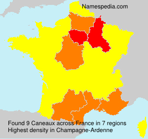 Surname Caneaux in France