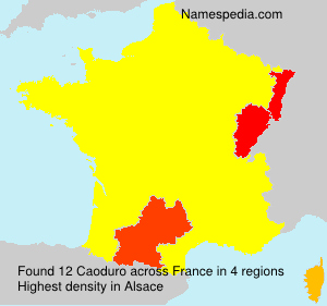 Surname Caoduro in France