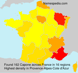 Surname Capone in France