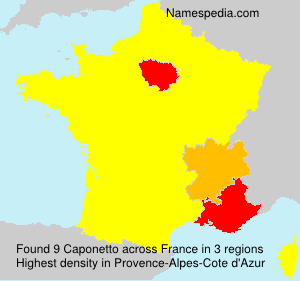 Surname Caponetto in France