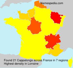 Familiennamen Cappalonga - France