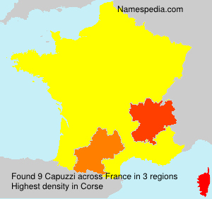 Surname Capuzzi in France