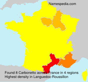 Surname Carbonetto in France