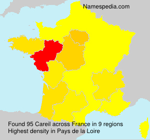 Surname Careil in France