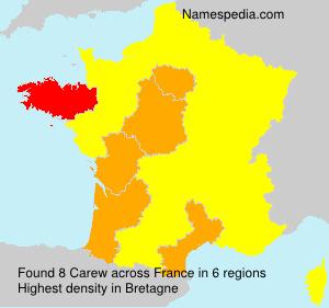 Surname Carew in France