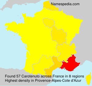 Surname Carotenuto in France