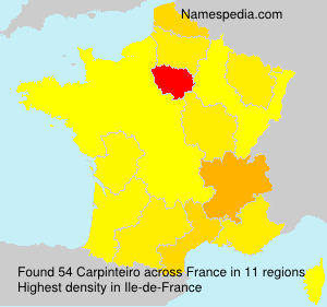 Surname Carpinteiro in France
