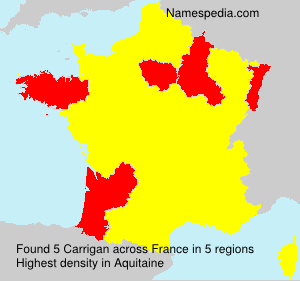 Surname Carrigan in France