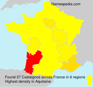 Surname Castaignos in France