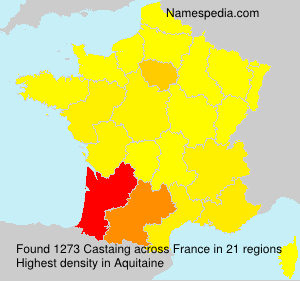 Surname Castaing in France