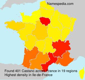 Familiennamen Castano - France