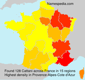 Surname Cattani in France