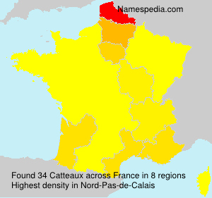 Surname Catteaux in France