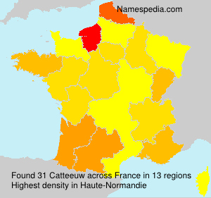 Surname Catteeuw in France