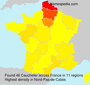Cauchefer
