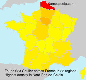 Surname Caulier in France