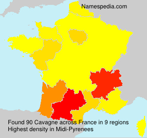 Surname Cavagne in France