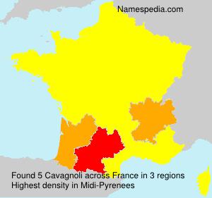 Familiennamen Cavagnoli - France