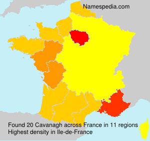 Surname Cavanagh in France