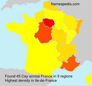 Surname Cay in France