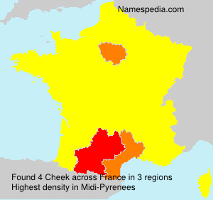 Surname Cheek in France