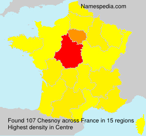Surname Chesnoy in France