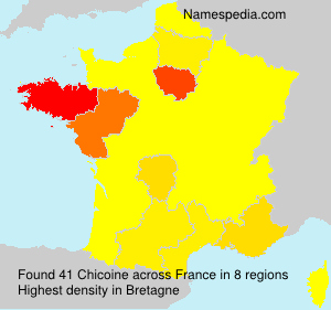 Surname Chicoine in France