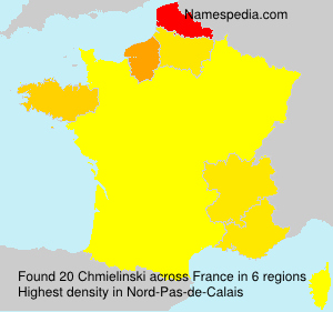 Surname Chmielinski in France