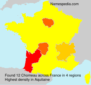 Surname Chomeau in France