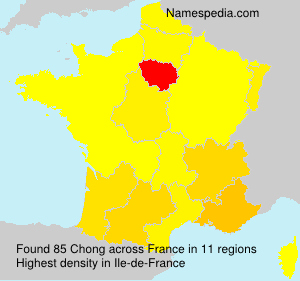 Surname Chong in France