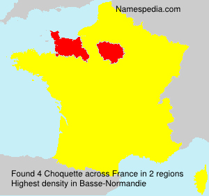 Surname Choquette in France