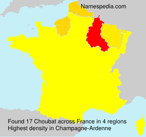 Surname Choubat in France