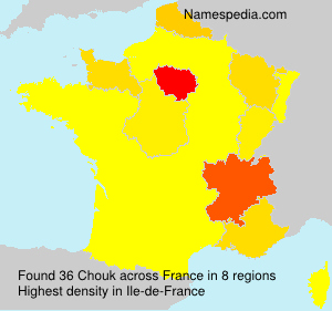Surname Chouk in France